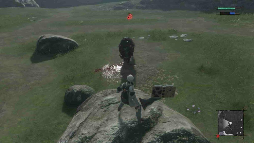 イノシシ狩りは岩の上から攻撃する
